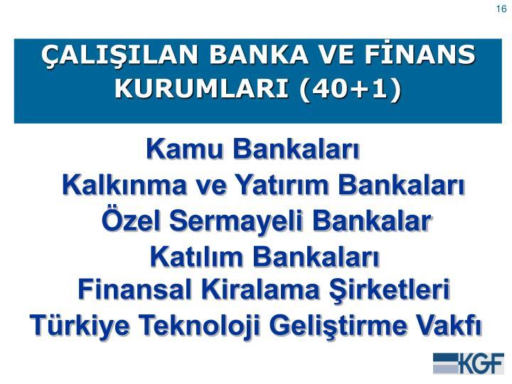ÇALIŞILAN BANKA VE FİNANS
