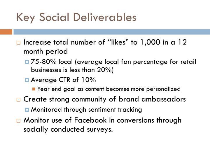 Key Social Deliverables