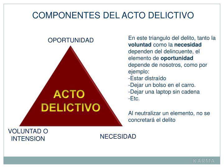 COMPONENTES DEL ACTO DELICTIVO