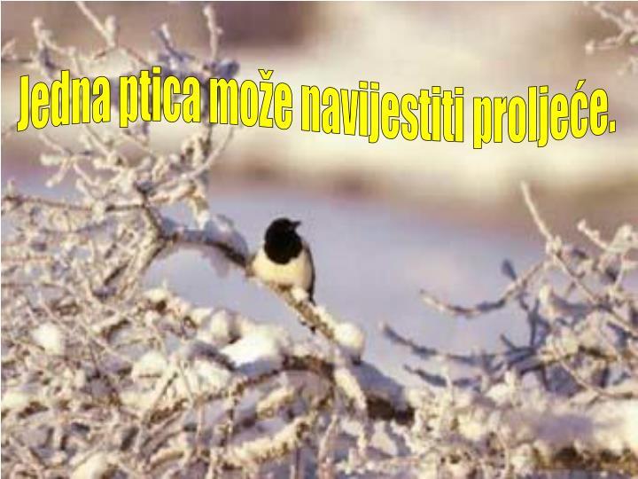 Jedna ptica može navijestiti proljeće.