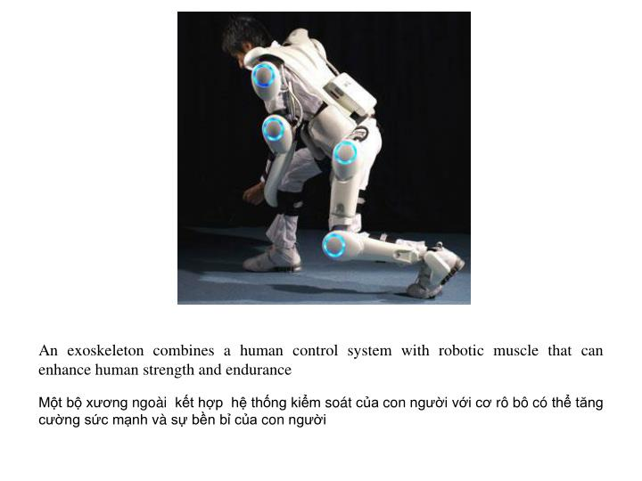 An exoskeleton combines a human control system with robotic muscle that can enhance human strength and endurance