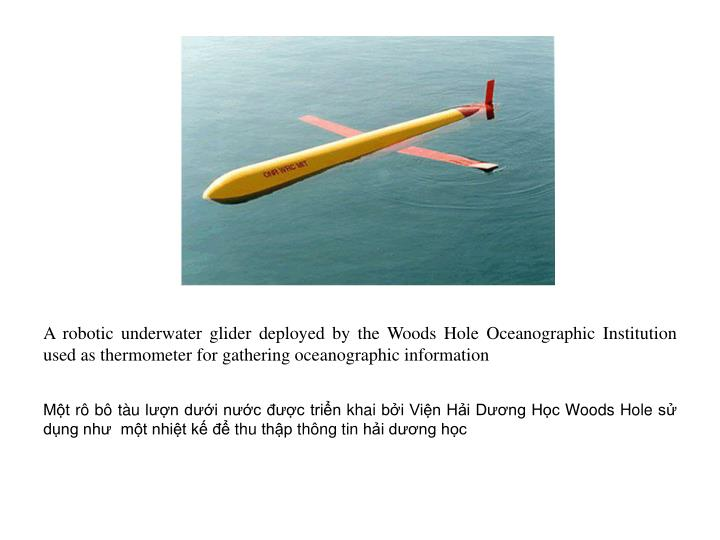 A robotic underwater glider deployed by the Woods Hole Oceanographic Institution  used as thermometer for gathering oceanographic information