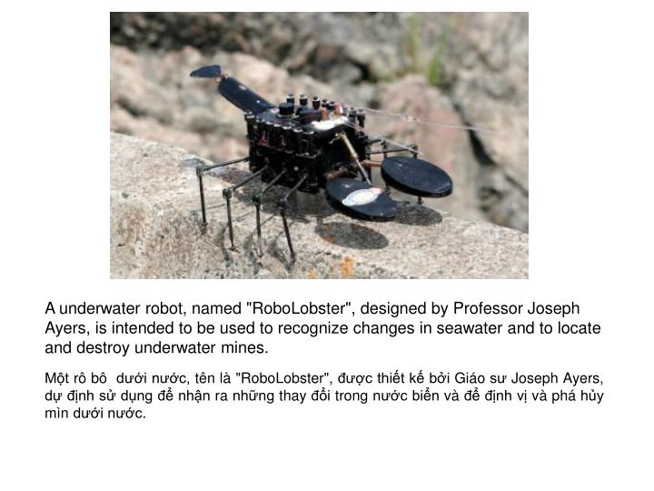 """A underwater robot, named """"RoboLobster"""", designed by Professor Joseph Ayers, is intended to be used to recognize changes in seawater and to locate and destroy underwater mines."""
