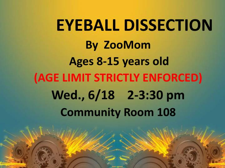 EYEBALL DISSECTION