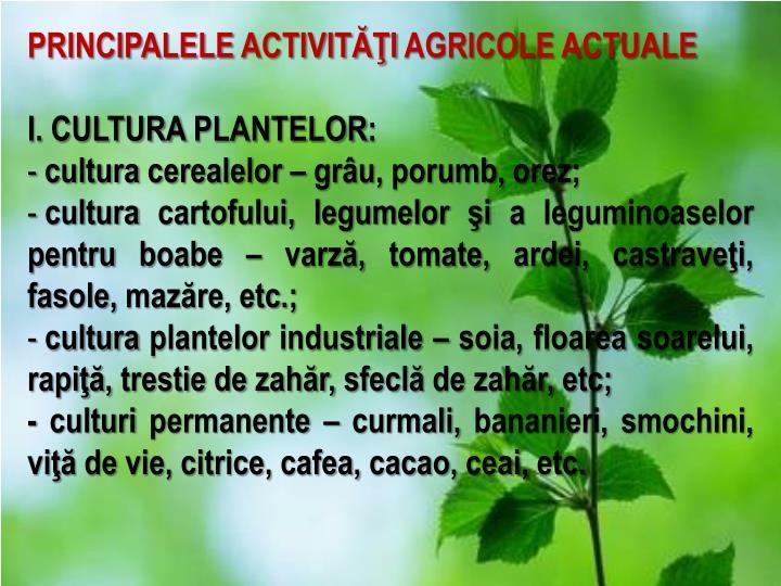 PRINCIPALELE ACTIVITĂŢI AGRICOLE ACTUALE