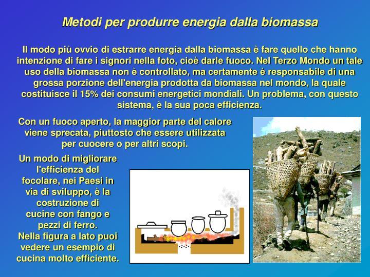 Metodi per produrre energia dalla biomassa