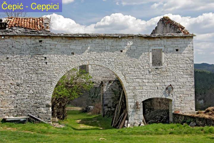 Čepić - Ceppici