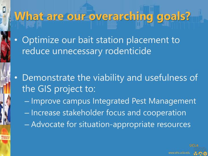 What are our overarching goals?