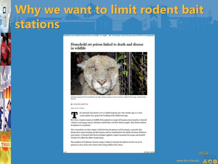 Why we want to limit rodent bait stations
