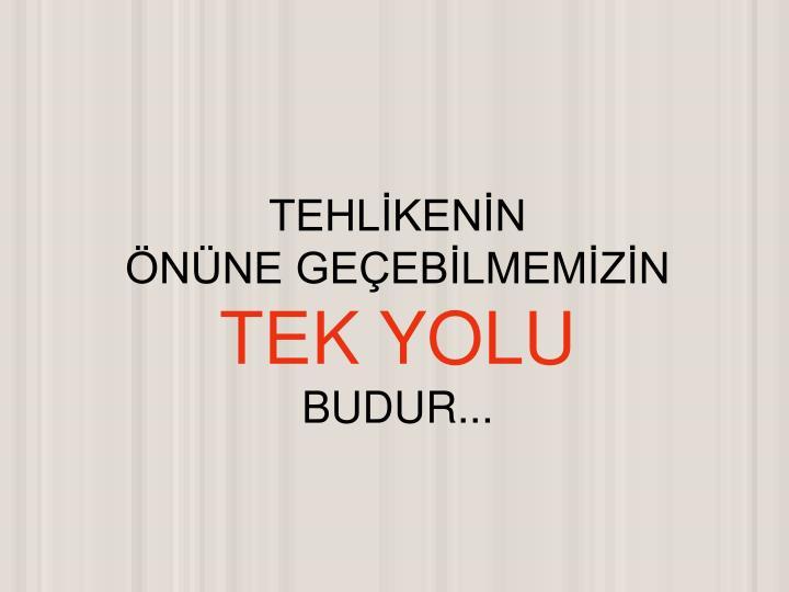 TEHLİKENİN