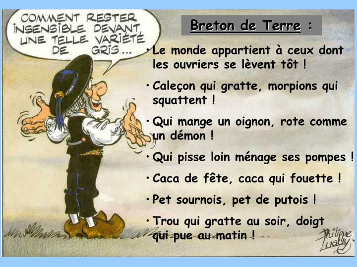 Breton de Terre