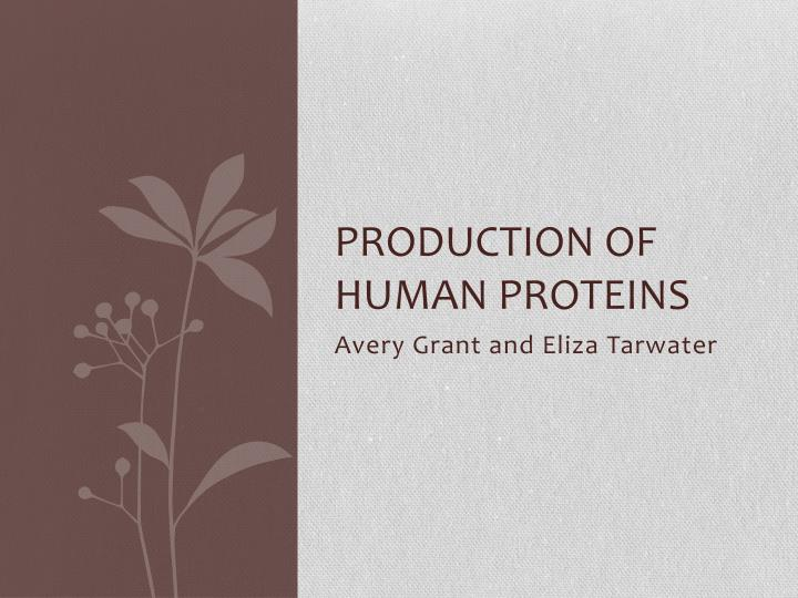 Production of Human Proteins