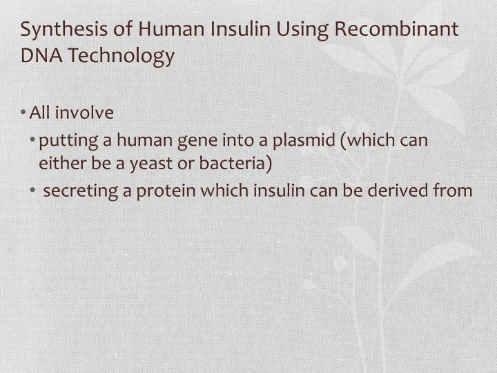 Synthesis of Human Insulin Using Recombinant DNA Technology