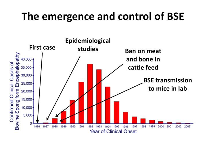 The emergence and control of BSE