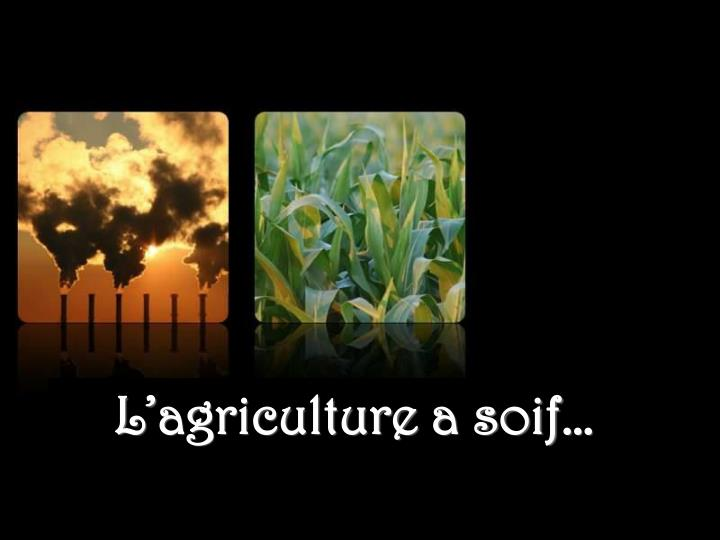 L'agriculture a soif…