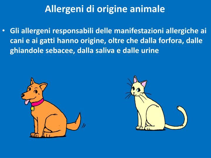 Allergeni di origine animale