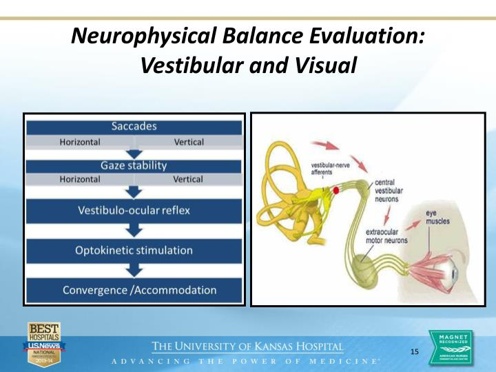 Neurophysical Balance Evaluation: