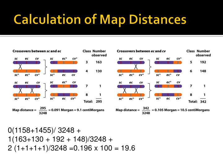 Calculation of Map Distances