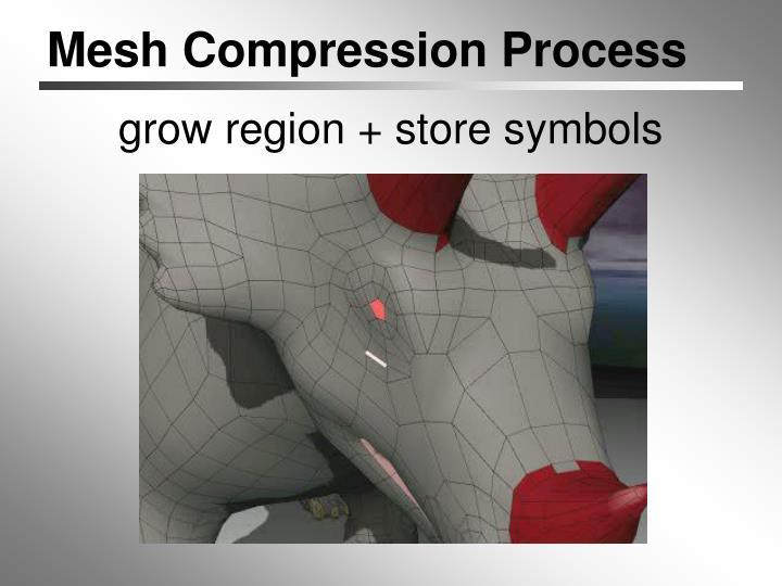 Mesh Compression Process