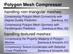 polygon mesh compressor