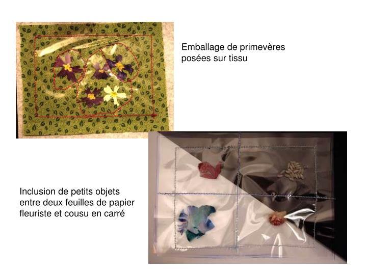 Emballage de primevères posées sur tissu