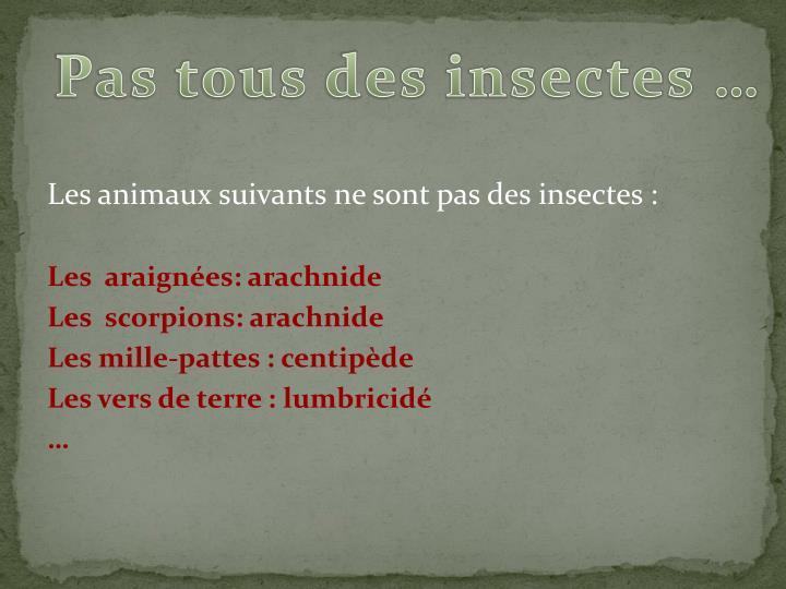 Pas tous des insectes …