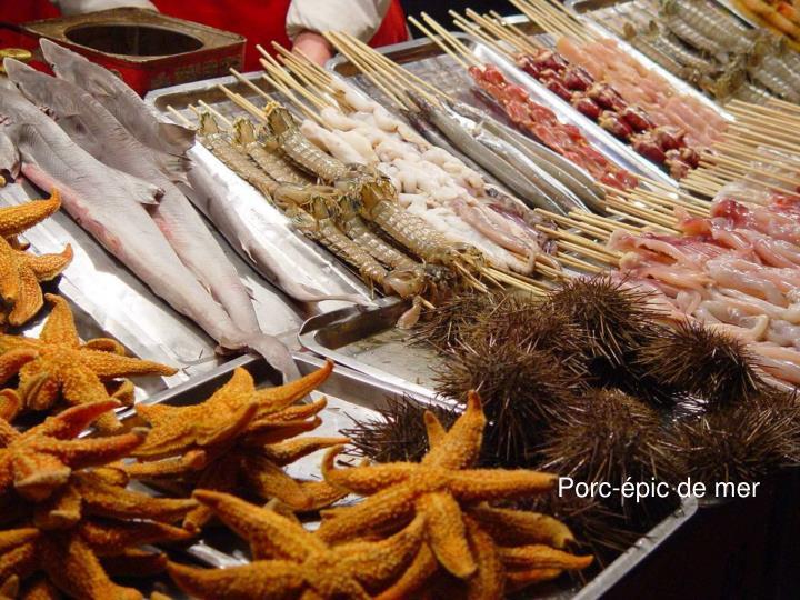 Porc-épic de mer