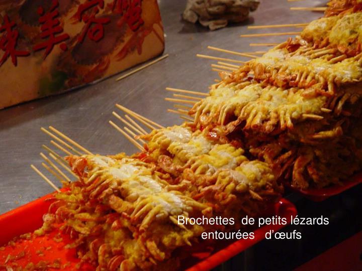 Brochettes  de petits lézards  entourées   d'œufs