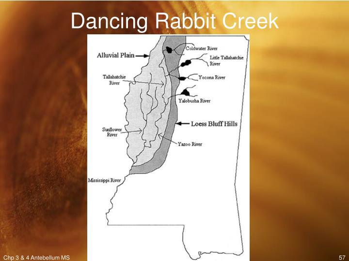 Dancing Rabbit Creek