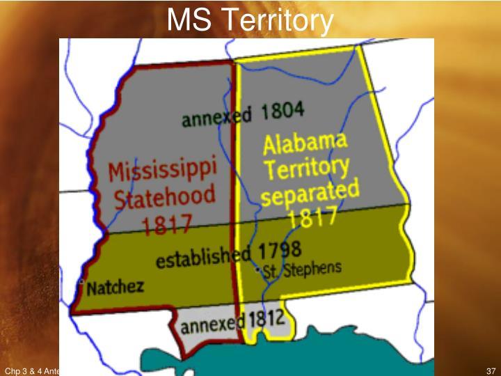 MS Territory