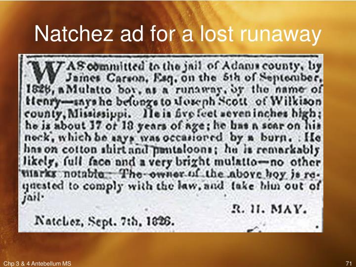 Natchez ad for a lost runaway