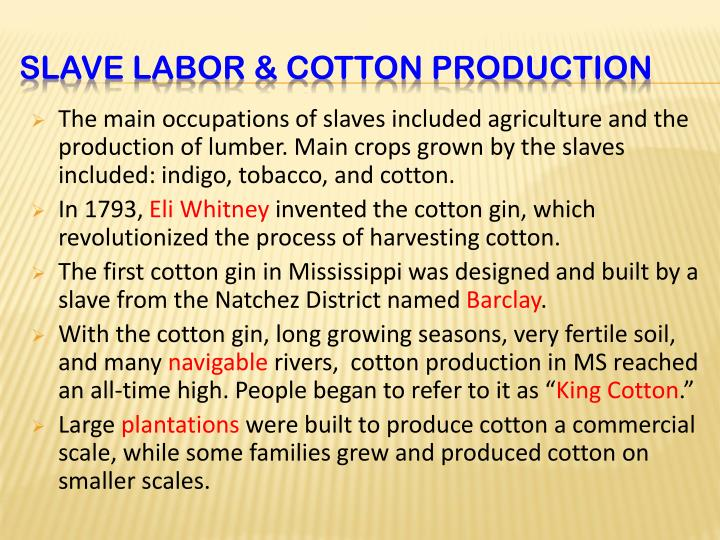 The main occupations of slaves included agriculture and the production of lumber. Main crops grown by the slaves included: indigo, tobacco, and cotton.