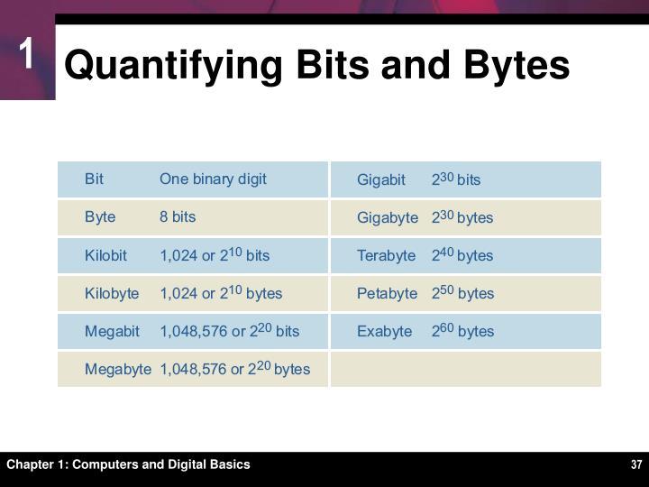 Quantifying Bits and Bytes