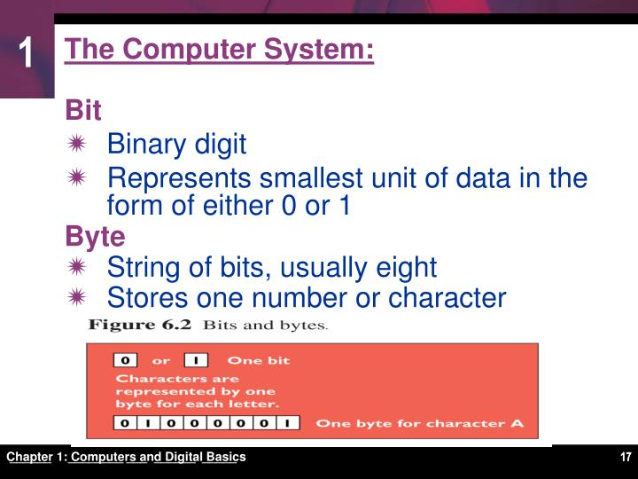 The Computer System: