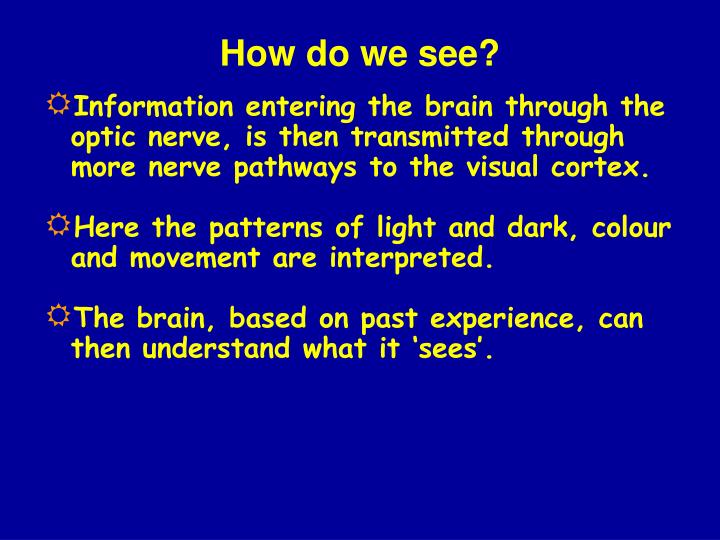 How do we see?