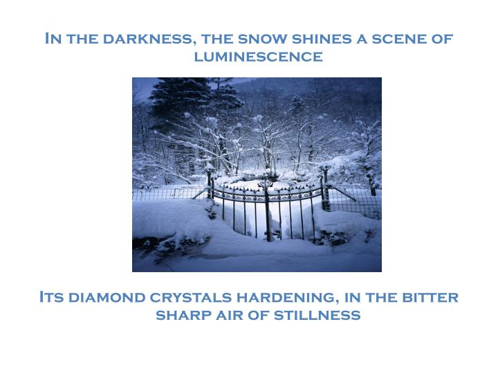 In the darkness, the snow shines a scene of luminescence
