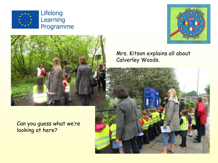 Mrs. Kitson explains all about Calverley Woods.