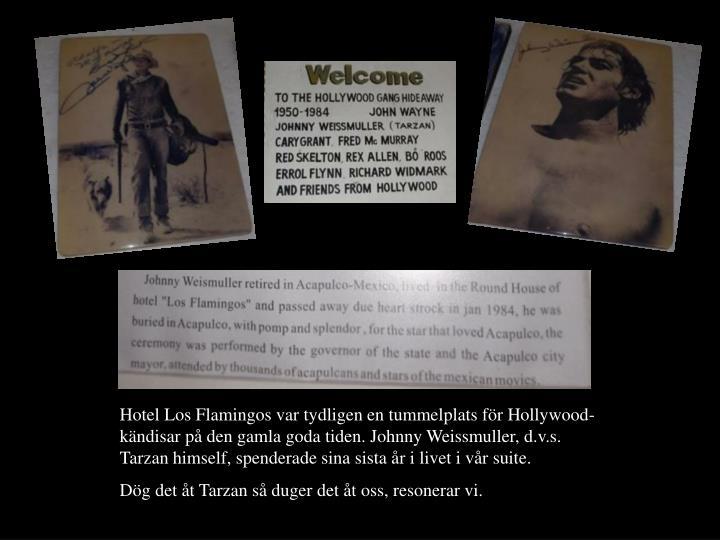 Hotel Los Flamingos var tydligen en tummelplats fr Hollywood-kndisar p den gamla goda tiden. Johnny Weissmuller, d.v.s. Tarzan himself, spenderade sina sista r i livet i vr suite.