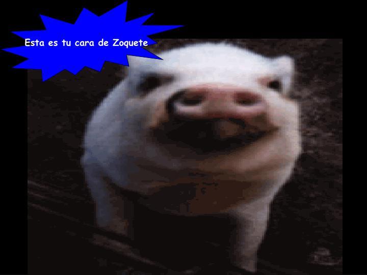 Esta es tu cara de Zoquete