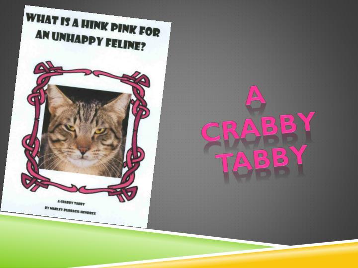 A crabby tabby