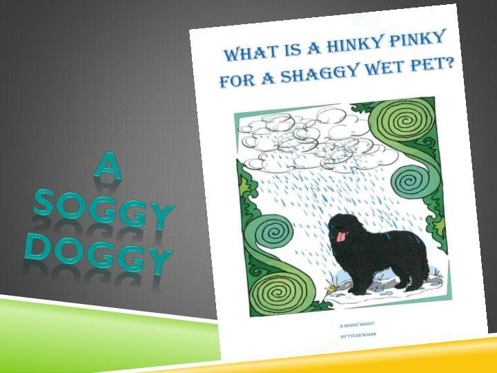 A soggy doggy