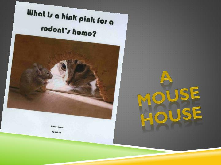 A mouse house