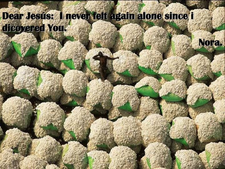 Dear Jesús:  I never felt again alone since i dicovered You.