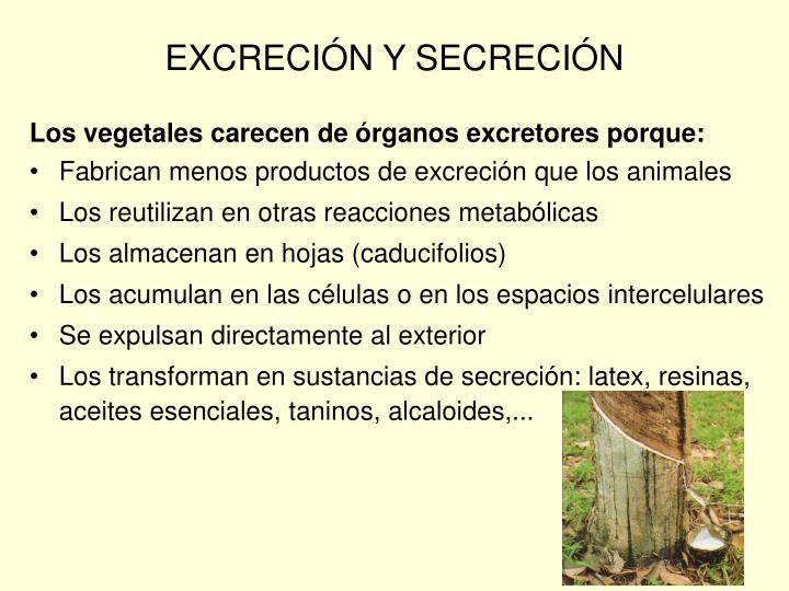 EXCRECIÓN Y SECRECIÓN