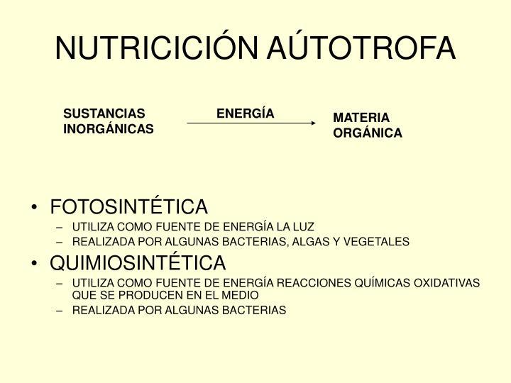 NUTRICICIÓN AÚTOTROFA