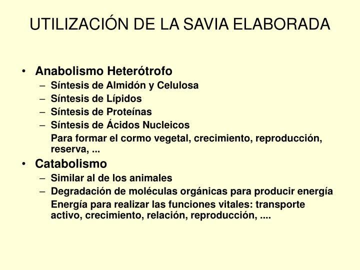 UTILIZACIÓN DE LA SAVIA ELABORADA