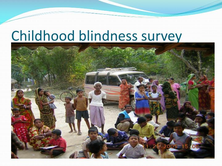 Childhood blindness survey