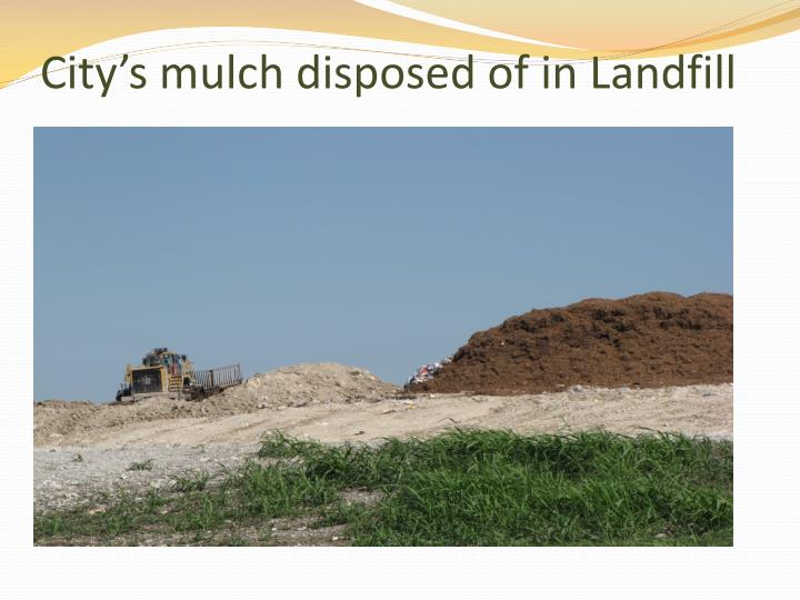 City's mulch disposed of in Landfill