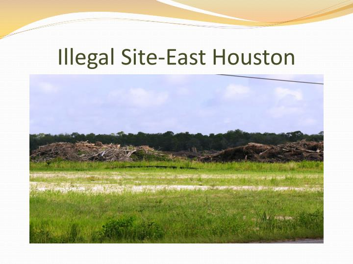 Illegal Site-East Houston