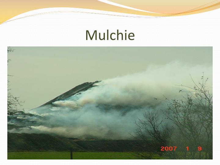 Mulchie